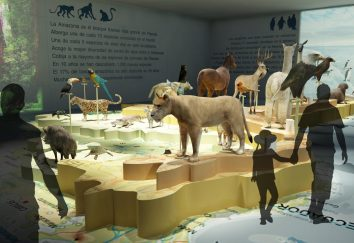 Miami Wildlife Museum · América