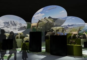 Miami Wildlife Museum · Europa